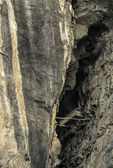 A 'Hanging' Coffin', set in the limestone gorge of the Shennong Stream, by the Yangtze River, China