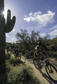 Mountain biking in McDowell Mountain Park, Scottsdale, Arizona