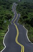 Highway upcountry, Maui, Hawaii