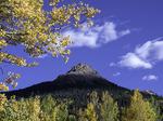 Aspens frame Red Mountain No. 2, Red Mountain Pass, San Juan Mountains, Colorado