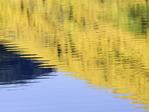 Aspens reflected in Crystal Lake, Red Mountain Pass, San Juan Mountains, Colorado
