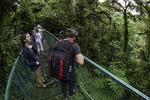 Walking across one of 8 hanging bridges in the Monterverde Preserve, Costa Rica