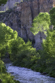 Morning light on Aravaipa Creek, running through Aravaipa Canyon Wilderness, Arizona