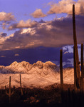 Four Peaks in spring snow at sunset, seen from the Beeline Highway, Arizona