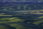Sunrise light from Steptoe Butte, Palouse, Washington