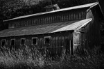 Faded barn, Palouse, Washington