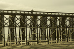 Crossing the wooden trestle bridge at Fort Bragg, Mendocino County, CA