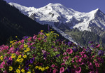 View of Mont Blanc from Chamonix, France