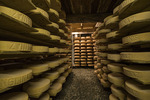 Aging mountain cheese wheels in a cheese cave, Sinale, Switzerland