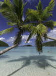 Chilling in Maho Bay, US Virgin Islands National Park, St. John, US Virgin Islands