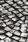Cobblestone of limestone, polished by centuries of footsteps, make up the streets and sidewalks of Lisbon, Portugal