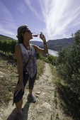 Tasting Tawny Port, Sandeman, Quinta do Seixo winery, Barca d'Alva, Rio Douro, Portugal