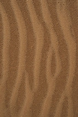 Raindrop patterns in sand, Coral Pink Sand Dunes, Utah