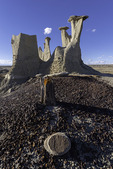Eroded formations and petrified trees decorate the badlands of Ah Shi Sle Pah, New Mexico