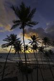 Sunrise at Bottom Bay, East Coast of Barbados