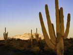 Sunset on Four Peaks, Maztzal Mountains, Arizona