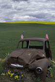 Chevrolet truck with flags, Palouse, Washington
