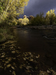Autumn color and stormlight on Oak Creek and Cathedral Rocks, Red Rock Crossing Park, Sedona