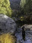 Fly fishing Oak Creek, Oak CReek Canyon, Sedona, Arizona