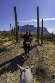 Riding west of the Superstition Mountains, Apache Junction, Arizona
