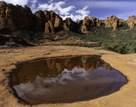 Tinaja filled with rain water, Schnebley Hill Road, Sedona, Arizona