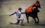 A matador works his bull at the Americana Bullring in Nogales, Mexico