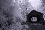 A vintage covered bridge, near Yachats, Oregon