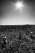 Little Bighorn battlefield in summer, Montana