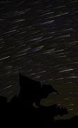 Stars stream over the Bird of Prey at Devil's Fire, Nevada