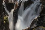 Avalanche Creek, Glacier NP, Montana