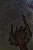 Swirling north stars over the Medusa crested saguaro, Cochise County, Arizona