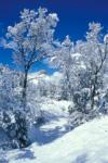 Winter view of Perins Peak