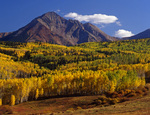 Fall Aspens and Sunshine Mountain, Uncompahgre National Forest, Colorado
