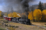 Excursion train with steam locomotive No.488, 1925 Baldwin 2-8-2, against a background of Fall Aspens, Cumbres & Toltec Scenic Railroad, New Mexico