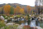 Fall colors in John Denver Sanctuary, Aspen, Colorado