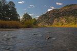 The Arkansas River, Ruby Mountain Recreation Site, Browns Canyon National Monument, Colorado