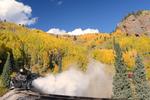 Steam locomotive No.463 pulling excursion train with Fall Aspens, Cumbres & Toltec Scenic Railroad, Colorado