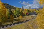 Steam locomotive No.484 pulling excursion train with Fall colors, Cumbres & Toltec Scenic Railroad, New Mexico