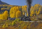 Former Denver & Rio Grande Western steam locomotive No.315 pulling stock train with Fall Aspens, Durango Railroad Historical Society, on the Cumbres & Toltec Scenic Railroad, Colorado