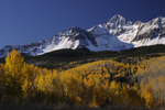 Wilson Peak and Fall Aspens, Uncompahgre National Forest, CO