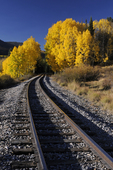 Rail line leading to the unknown and Fall Aspens, Colorado