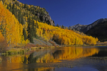 Fall Aspens with reflection in Crystal Lake, Uncompahgre National Forest, Colorado