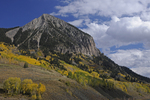 Mt. Crested Butte and Fall Aspens, Colorado