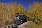Steam locomotive No.487 pulling the excursion train with Fall Aspens in full color, Cumbres & Toltec Scenic Railroad, Colorado