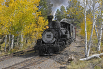 Steam locomotive No.453 pulling a Special Freight Train passing Fall Aspens, Cumbres & Toltec Scenic Railroad, Colorado