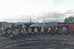 Fleet of 8 steam locomotives at the Roundhouse, Durango & Silverton Narrow Gauge Railroad, Durango, Colorado