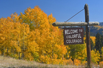 A Welcome To Colorful Colorado highway sign with Fall Aspen trees, Colorado