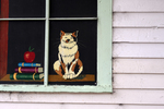 A painting in the window of a public building of the Cumbres & Toltec Scenic Railroad, Sublette, New Mexico