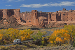 Arches Scenic Drive with Fall Cottonwood trees in Courthouse Wash, Arches National Park, UT