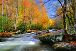 Autumn along the Little River, Great Smoky Mountains National Park, Tennessee, USA
